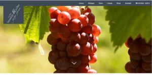 Weingut-mit-traditionen